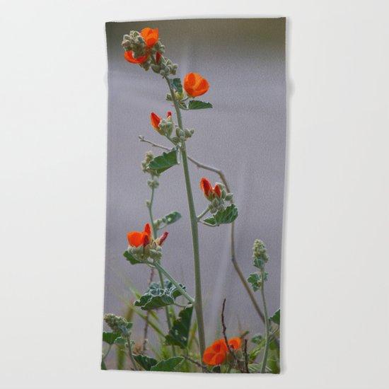 Desert Wildflower - 3 Beach Towel