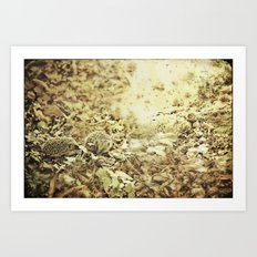 oilk Art Print