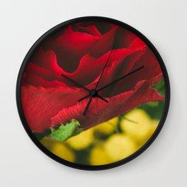 Roses and mimosas Wall Clock