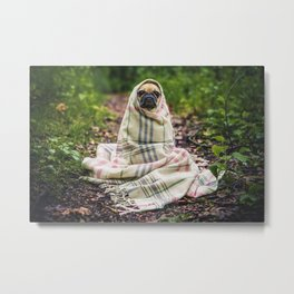 Snug pug in tartan Metal Print