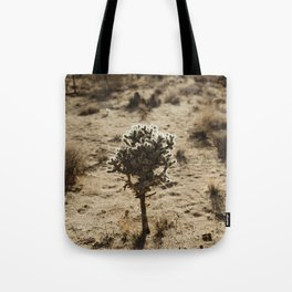 Cholla Cactus in Joshua Tree National Park Tote Bag