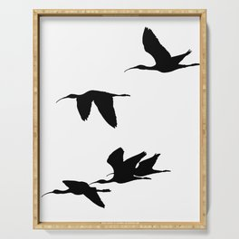 Silhouette of Glossy Ibises In Flight Serving Tray