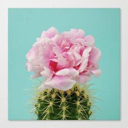 Cactus peony Canvas Print