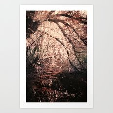 Light reflected in black water Art Print