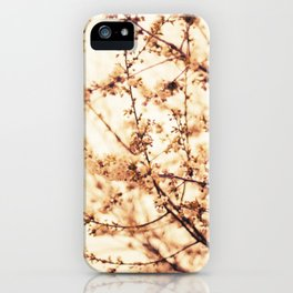 Mood at Sunset iPhone Case