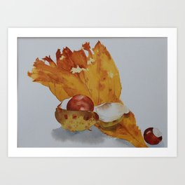 Autumn leaf and conker Art Print