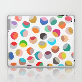 painted chestnuts 1 Laptop & iPad Skin