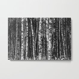 Forest in B&W Metal Print