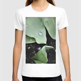 Morning Dew T-shirt