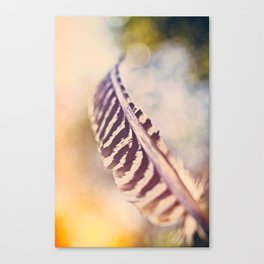 Let the wind carry you Canvas Print