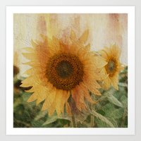 sunflower Art Prints featuring sunflower by VanessaGF