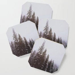 Misty Pines Coaster