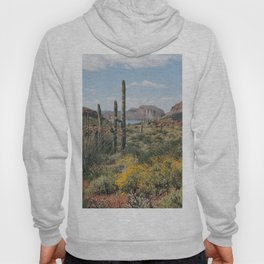 Arizona Spring Hoody