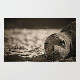 Elephant seal face close up in sepia tone Rug