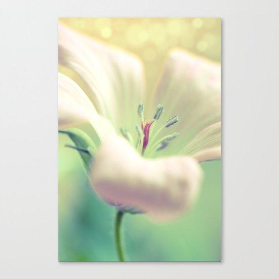 Pale Rapture Canvas Print