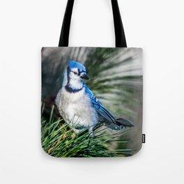 Bright BlueJay Tote Bag