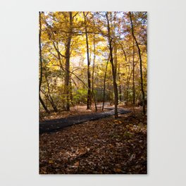 A Seat in the Sunlight Canvas Print