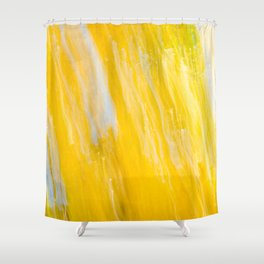 Indomitable Light 2 Shower Curtain