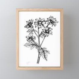 Daisy Gerbera, Printable Wall Art, Digital Download, Printable Poster, Wall Art, Wall Decor, Floral Framed Mini Art Print