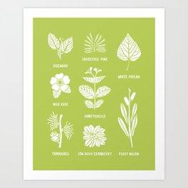 Trees & Shrubs // Green + White Art Print