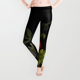 Passiflora Cerulea Mary Delany Delicate Paper Flower Collage Black Background Floral Botanical Leggings