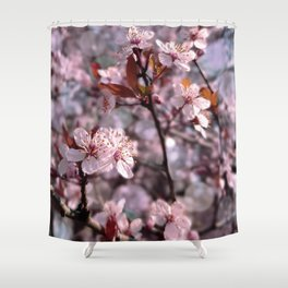 Cherry Plum Tree Pink Shower Curtain