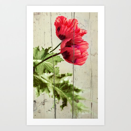 The Things We Remember - red poppy photo on wood texture Art Print