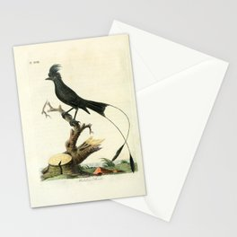 John Latham - A General History of the Birds, Vol 2 (1821) - Plate 18: Malabar Shrike Stationery Cards