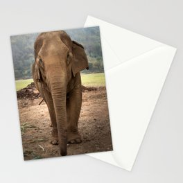 Marnie the Elephant Stationery Cards