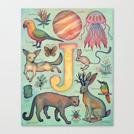 'J' collection Canvas Print