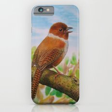 A Brown Bird iPhone 6s Slim Case