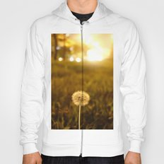 Golden Dandelion Sunset Hoody