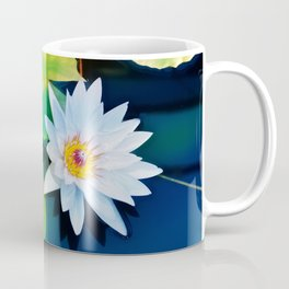 Lone water Lily afloat above the lily pads Coffee Mug