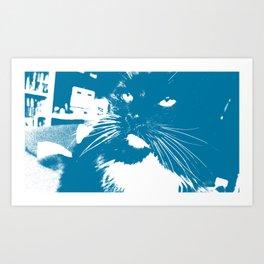miserable cat Art Print