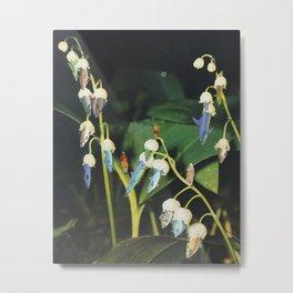Fishflower Metal Print
