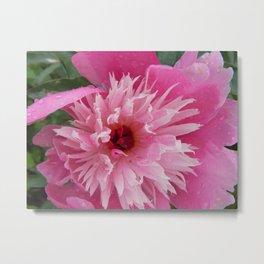 Wonderful Pink Flower Metal Print
