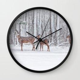 Winter Visits Wall Clock