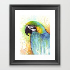 Bird Watercolor Animal Macaw Framed Art Print