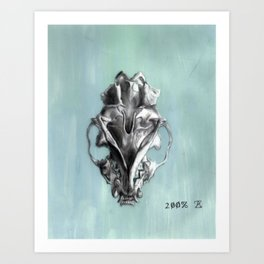 Ventral Surface of a Mink Skull Art Print