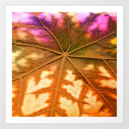 Leaf Incredible, Amber Art Print