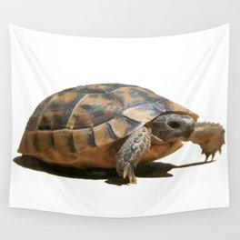 Portrait of a Young Wild Tortoise Isolated Wall Tapestry