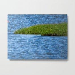 Marshland Metal Print