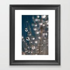 Flower Seed Drops Framed Art Print
