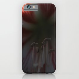 Peppermint Petals iPhone Case