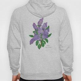 Lilacs: Syringa Hoody