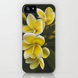 Pua Melia iPhone Case