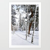 Colorado Scene Art Print