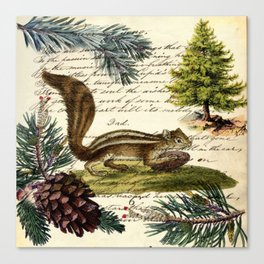 Rustic christmas winter evergreen pine tree woodland chipmunk Canvas Print