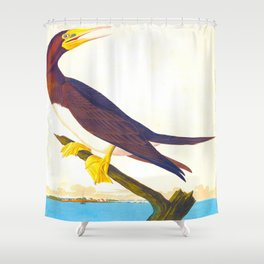 Booby Gannet John James Audubon Vintage Scientific Birds of America Illustration Shower Curtain