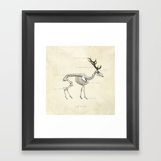 Death of the Red Tail Framed Art Print
